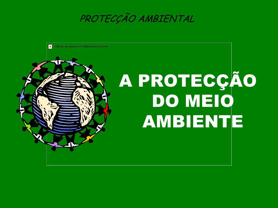 PROTECÇÃO AMBIENTAL A PROTECÇÃO DO MEIO AMBIENTE