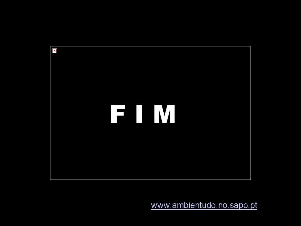 F I M www.ambientudo.no.sapo.pt