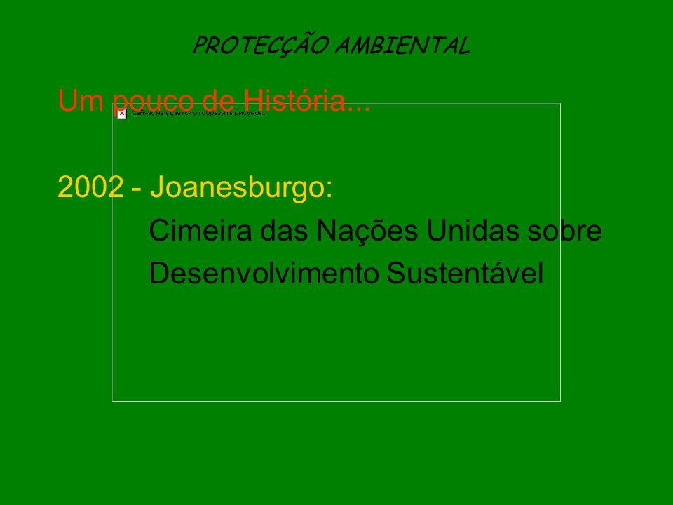 PROTECÇÃO AMBIENTAL Um pouco de História... 2002 - Joanesburgo: Cimeira das Nações Unidas sobre Desenvolvimento Sustentável