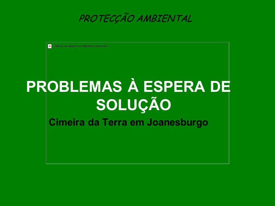 PROTECÇÃO AMBIENTAL PROBLEMAS À ESPERA DE SOLUÇÃO Cimeira da Terra em Joanesburgo