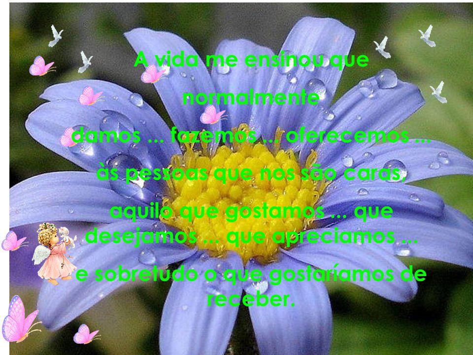 Autor do Texto e formatação: Nadir Berto :nadir.berto@gmail.com nadir.berto@gmail.com UM ABRAÇO DE VERDADE A VOCÊ!