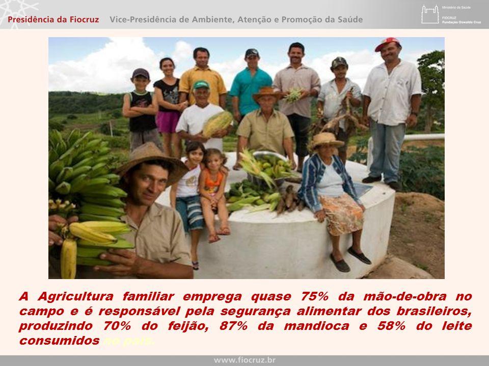 A Agricultura familiar emprega quase 75% da mão-de-obra no campo e é responsável pela segurança alimentar dos brasileiros, produzindo 70% do feijão, 8