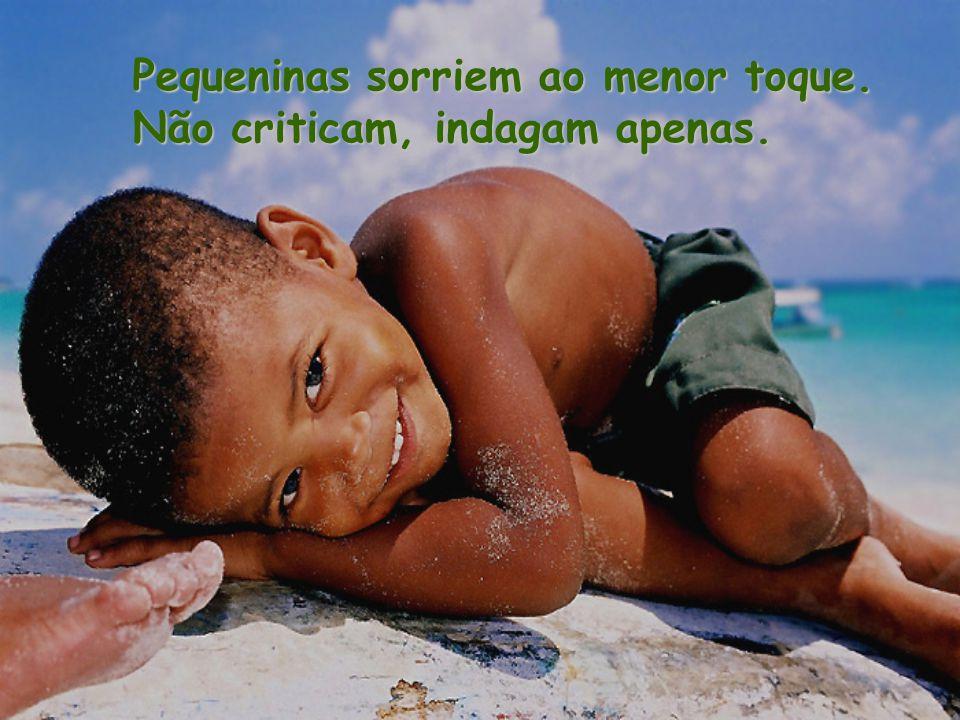 Pequeninas sorriem ao menor toque. Não criticam, indagam apenas.
