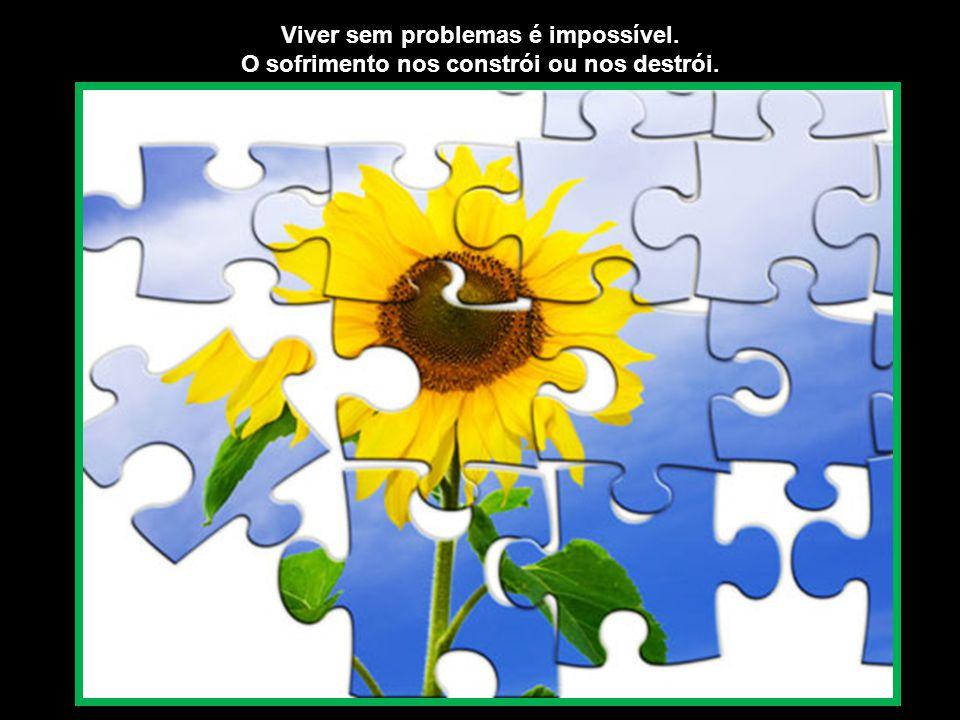 Os problemas nunca vão desaparecer, mesmo na mais bela existência. Problemas existem para serem resolvidos, e não para perturbar-nos.
