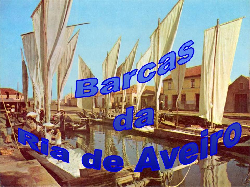 Barcas de diversos tamanhos na Cidade de Águeda.