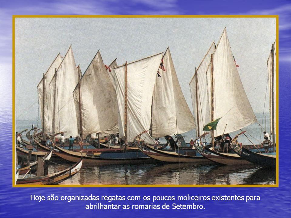 Antigamente, ao fim do dia, os moliceiros faziam autenticas regatas no seu regresso a casa. As suas velas lembravam bailarinos sobre as águas da Ria.