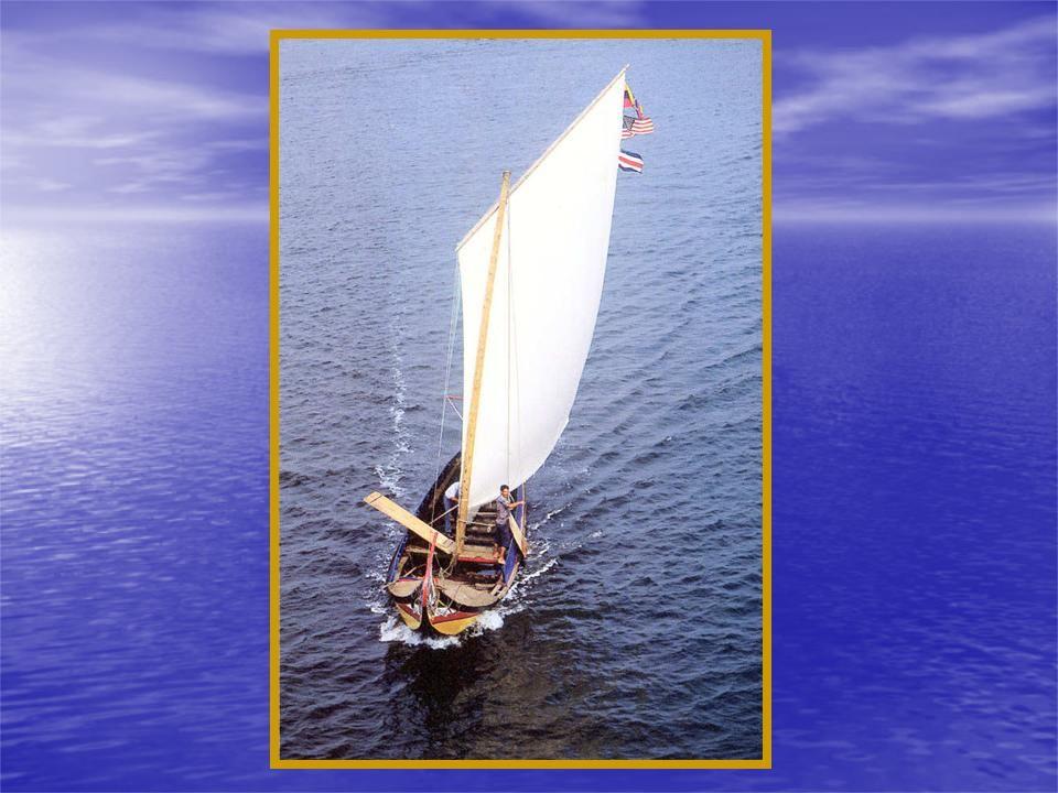 Hoje são organizadas regatas com os poucos moliceiros existentes para abrilhantar as romarias de Setembro.