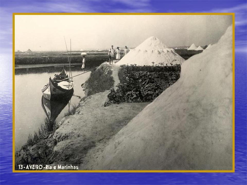 Verdadeiras regatas entre bateiras com pá de marinha, que juntavam sempre muitos espectadores.