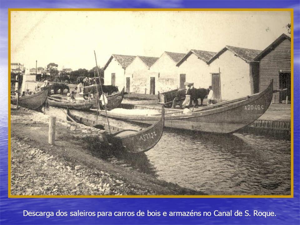 Descarga dos saleiros para carros de bois e armazéns no Canal de S. Roque.