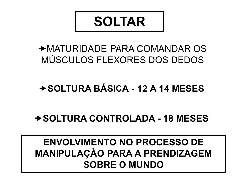 SOLTAR  MATURIDADE PARA COMANDAR OS MÚSCULOS FLEXORES DOS DEDOS  SOLTURA BÁSICA - 12 A 14 MESES  SOLTURA CONTROLADA - 18 MESES ENVOLVIMENTO NO PROC