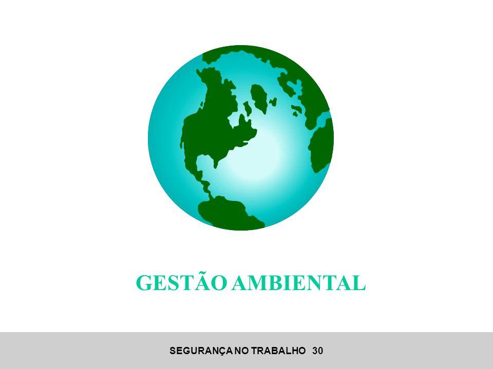 SEGURANÇA NO TRABALHO 30 GESTÃO AMBIENTAL