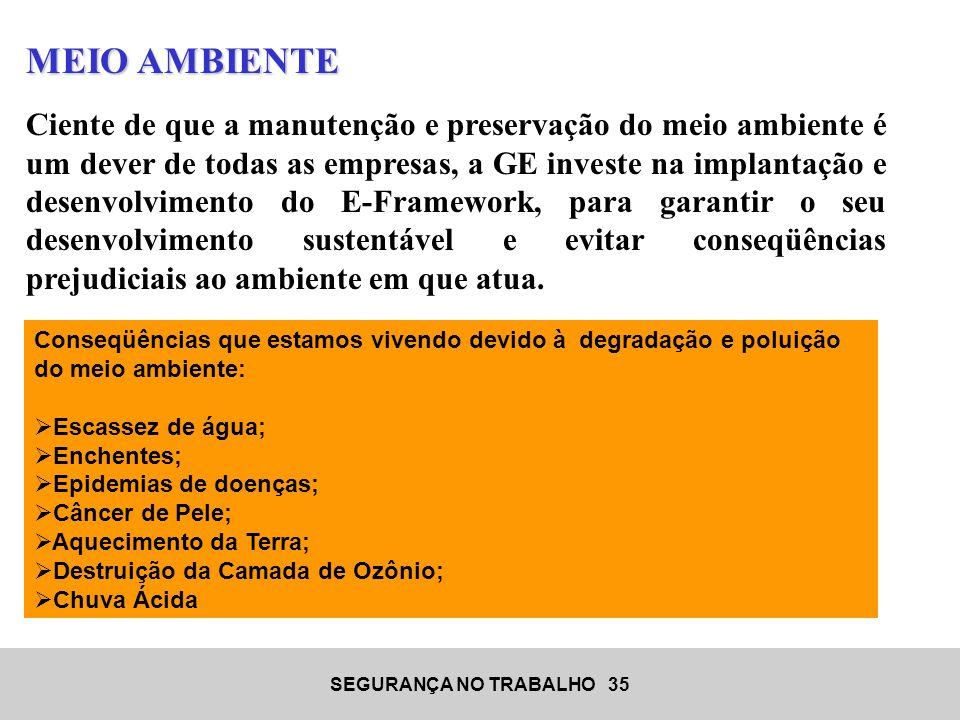 SEGURANÇA NO TRABALHO 35 MEIO AMBIENTE Ciente de que a manutenção e preservação do meio ambiente é um dever de todas as empresas, a GE investe na impl