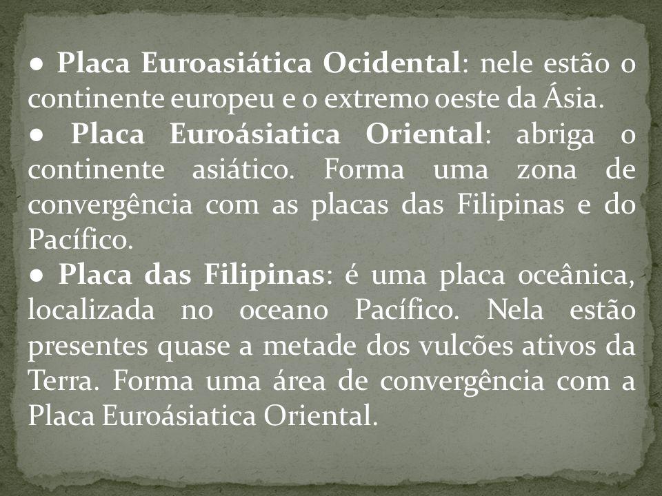 ● Placa Euroasiática Ocidental: nele estão o continente europeu e o extremo oeste da Ásia. ● Placa Euroásiatica Oriental: abriga o continente asiático