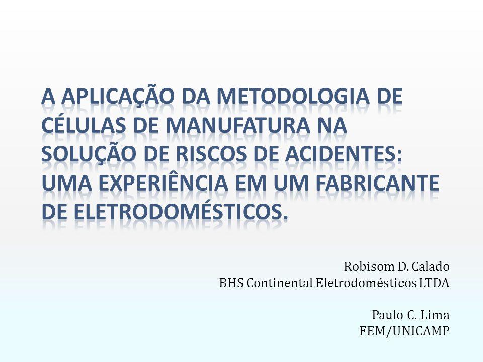 Robisom D. Calado BHS Continental Eletrodomésticos LTDA Paulo C. Lima FEM/UNICAMP