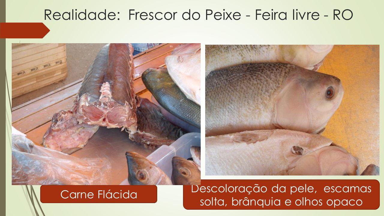 Realidade: Frescor do Peixe - Feira livre - RO Carne Flácida Descoloração da pele, escamas solta, brânquia e olhos opaco