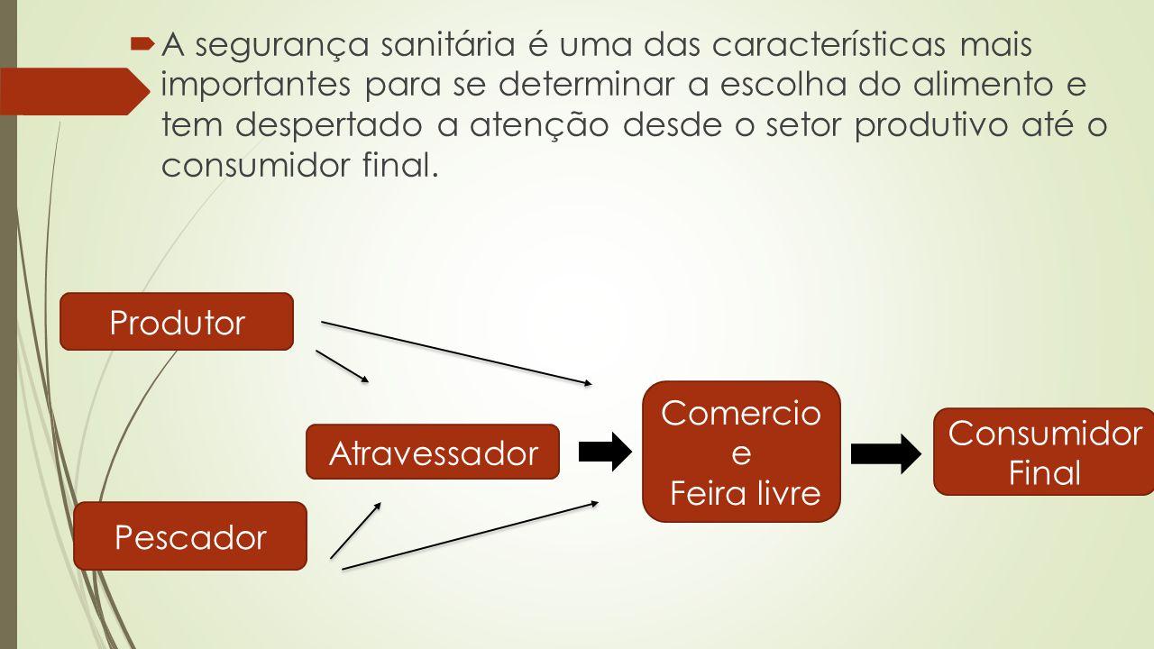 Quando o alimento em questão é o pescado, sua natureza extremamente perecível exige cuidados especiais quanto à manipulação e acondicionamento desde a captura até a comercialização (Galvão, 2006).