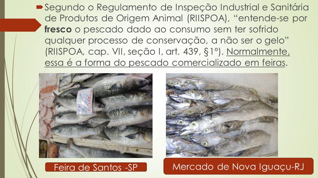 """ Segundo o Regulamento de Inspeção Industrial e Sanitária de Produtos de Origem Animal (RIISPOA), """"entende-se por fresco o pescado dado ao consumo se"""