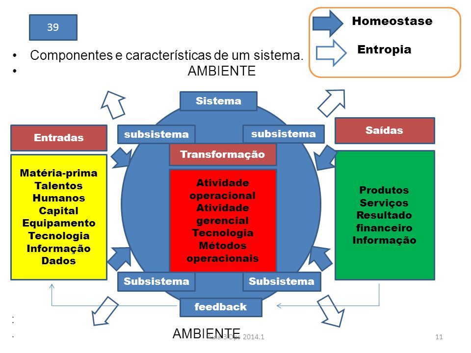 •Componentes e características de um sistema. • AMBIENTE • • AMBIENTE Matéria-prima Talentos Humanos Capital Equipamento Tecnologia Informação Dados A