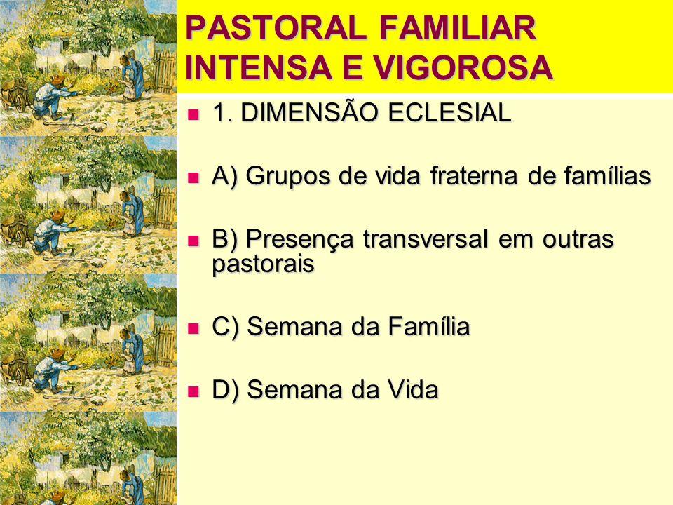 PASTORAL FAMILIAR INTENSA E VIGOROSA  1. DIMENSÃO ECLESIAL  A) Grupos de vida fraterna de famílias  B) Presença transversal em outras pastorais  C