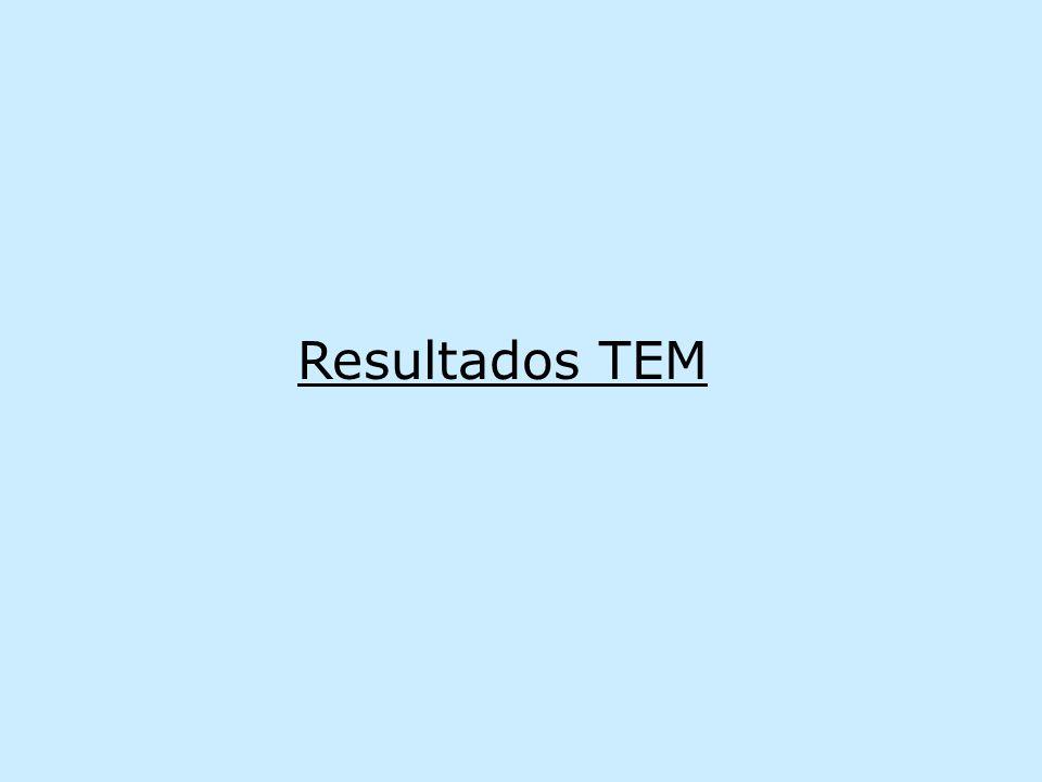 Resultados TEM