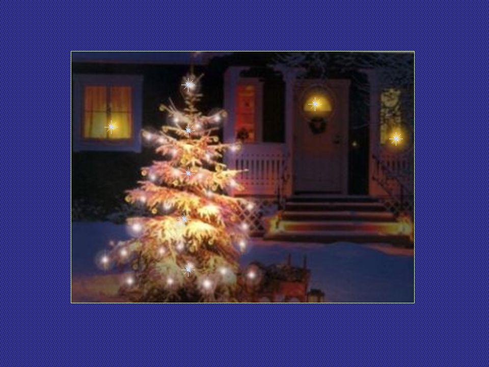 Estamos nos aproximando do Natal. Já começam a aparecer nas casas, varandas e ruas as árvores de Natal; umas grandes, outras menores, umas sofisticada