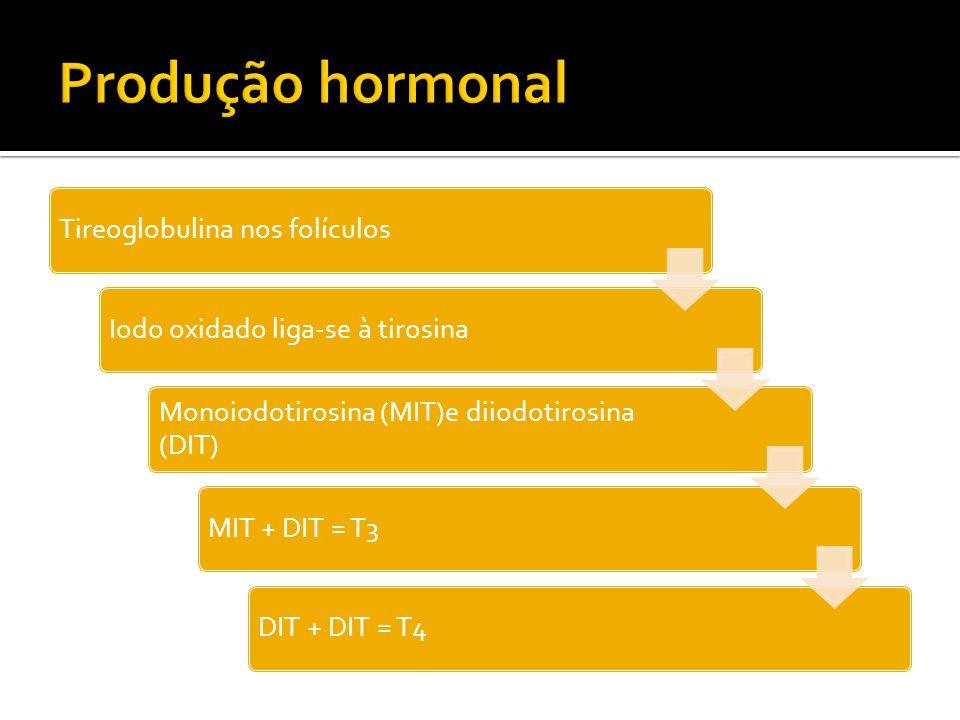 Tireoglobulina nos folículosIodo oxidado liga-se à tirosina Monoiodotirosina (MIT)e diiodotirosina (DIT) MIT + DIT = T3DIT + DIT = T4
