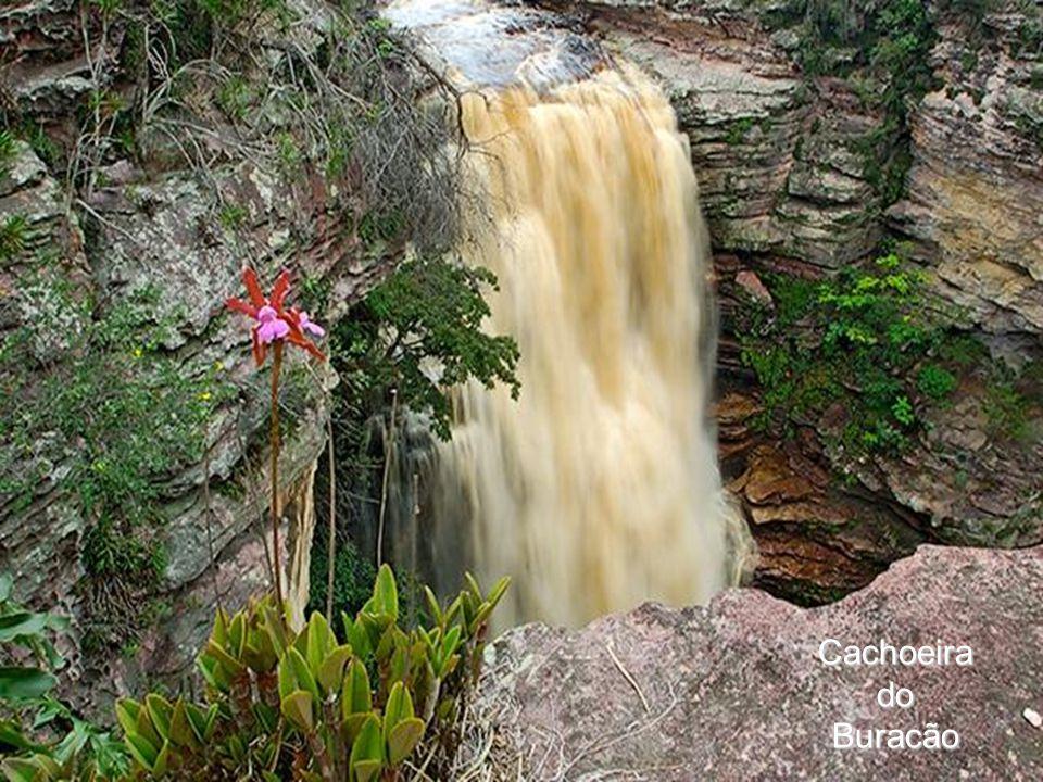 CachoeiradoBuracão
