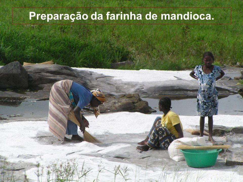 Agricultura As mulheres trabalham os campos. Cultivam mandioca, amendoim e outros legumes. Amendoim Mandioca