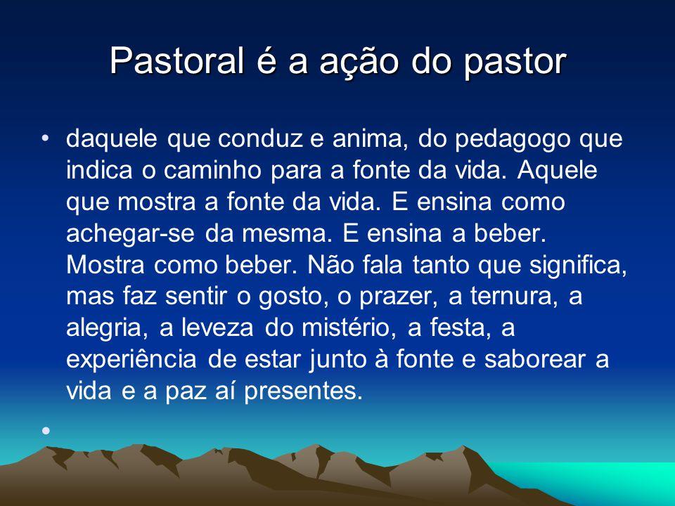 Pastoral é a ação do pastor •daquele que conduz e anima, do pedagogo que indica o caminho para a fonte da vida.