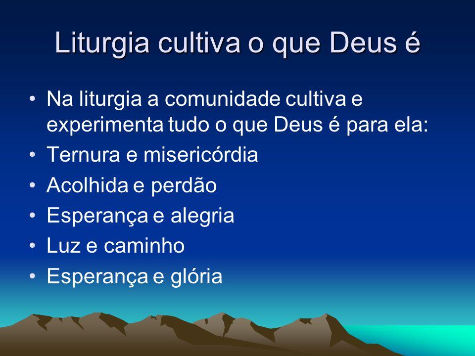 Liturgia cultiva o que Deus é •Na liturgia a comunidade cultiva e experimenta tudo o que Deus é para ela: •Ternura e misericórdia •Acolhida e perdão •Esperança e alegria •Luz e caminho •Esperança e glória