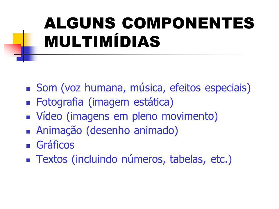 ALGUNS COMPONENTES MULTIMÍDIAS  Som (voz humana, música, efeitos especiais)  Fotografia (imagem estática)  Vídeo (imagens em pleno movimento)  Ani