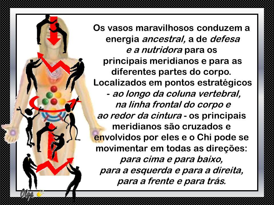 Os vasos maravilhosos agem como reservatórios de energia Chi, em relação aos meridianos principais.