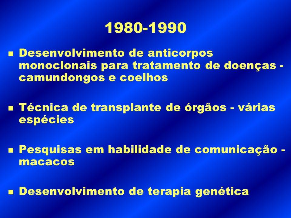 1980-1990 n Desenvolvimento de anticorpos monoclonais para tratamento de doenças - camundongos e coelhos n Técnica de transplante de órgãos - várias e
