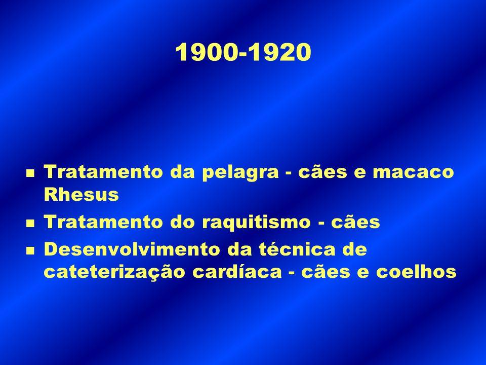 1900-1920 n Tratamento da pelagra - cães e macaco Rhesus n Tratamento do raquitismo - cães n Desenvolvimento da técnica de cateterização cardíaca - cã