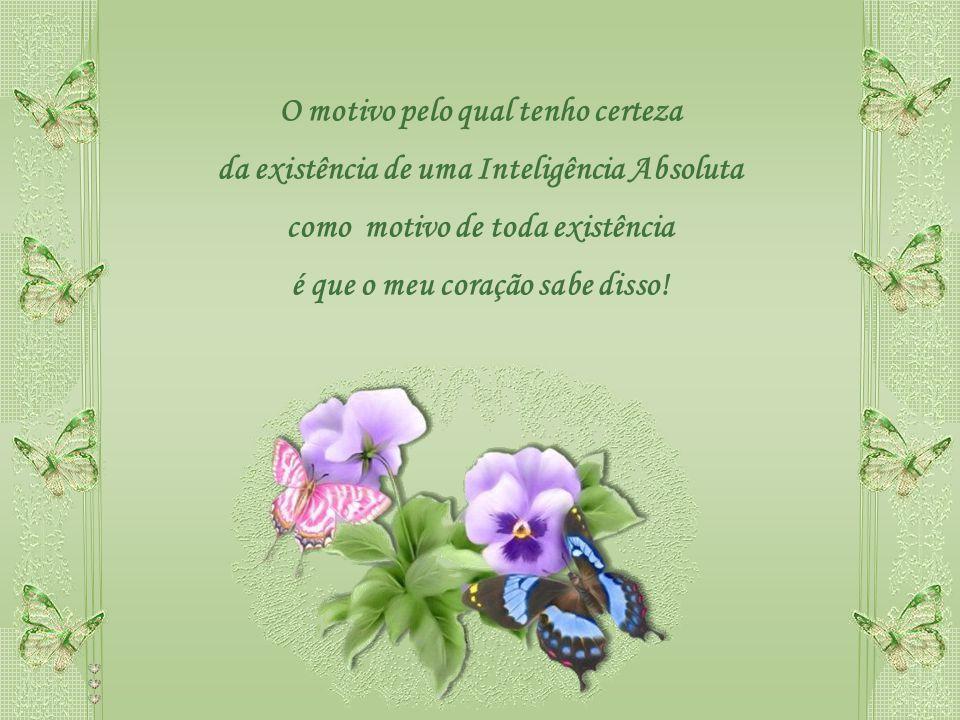 O motivo pelo qual tenho certeza da existência de uma Inteligência Absoluta como motivo de toda existência é que o meu coração sabe disso!