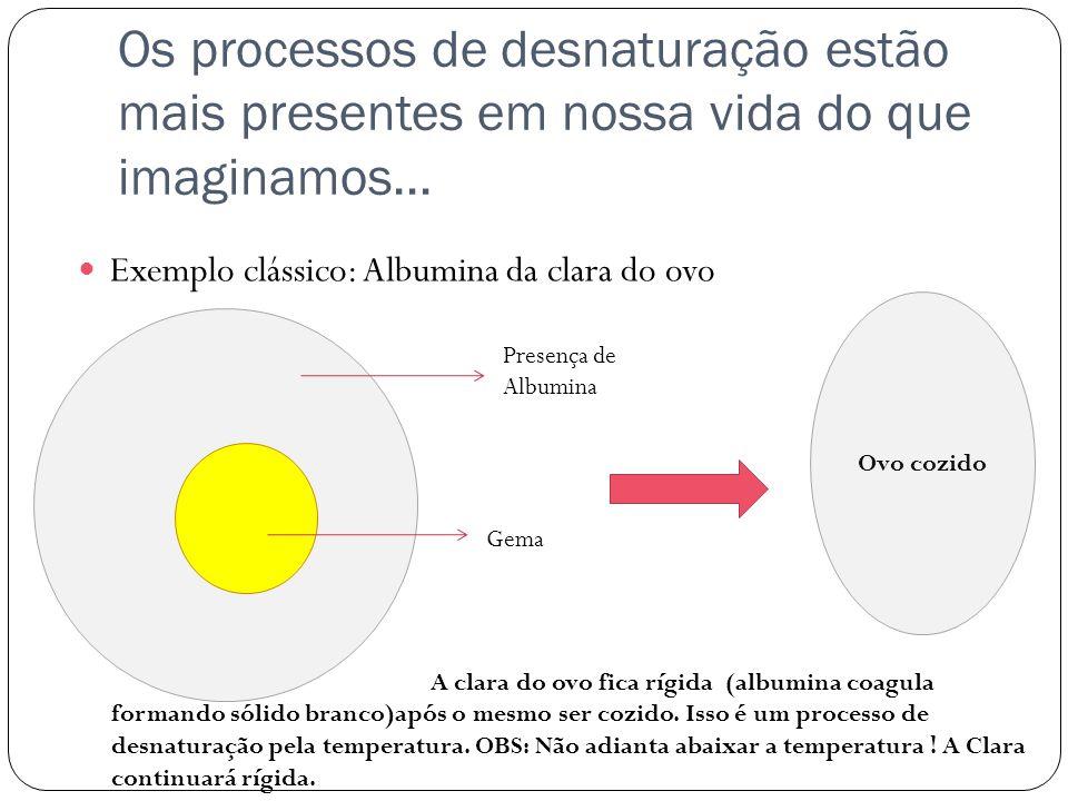 Os processos de desnaturação estão mais presentes em nossa vida do que imaginamos...  Exemplo clássico: Albumina da clara do ovo Gema Presença de Alb