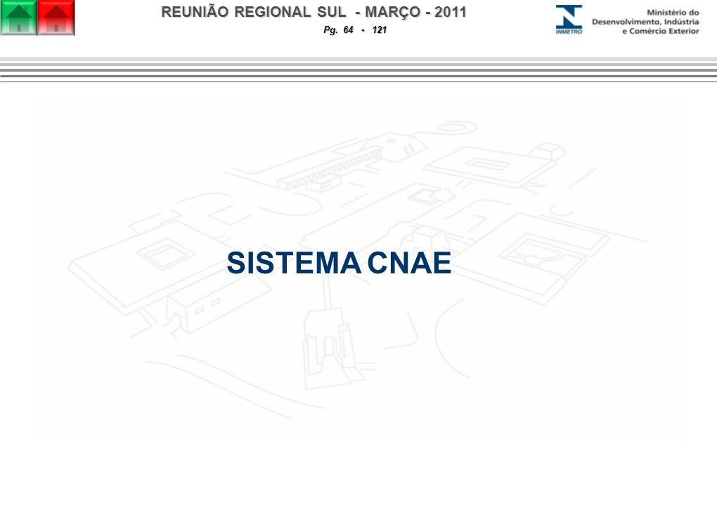 REUNIÃO REGIONAL SUL - MARÇO - 2011 Pg. 64 - 121 SISTEMA CNAE