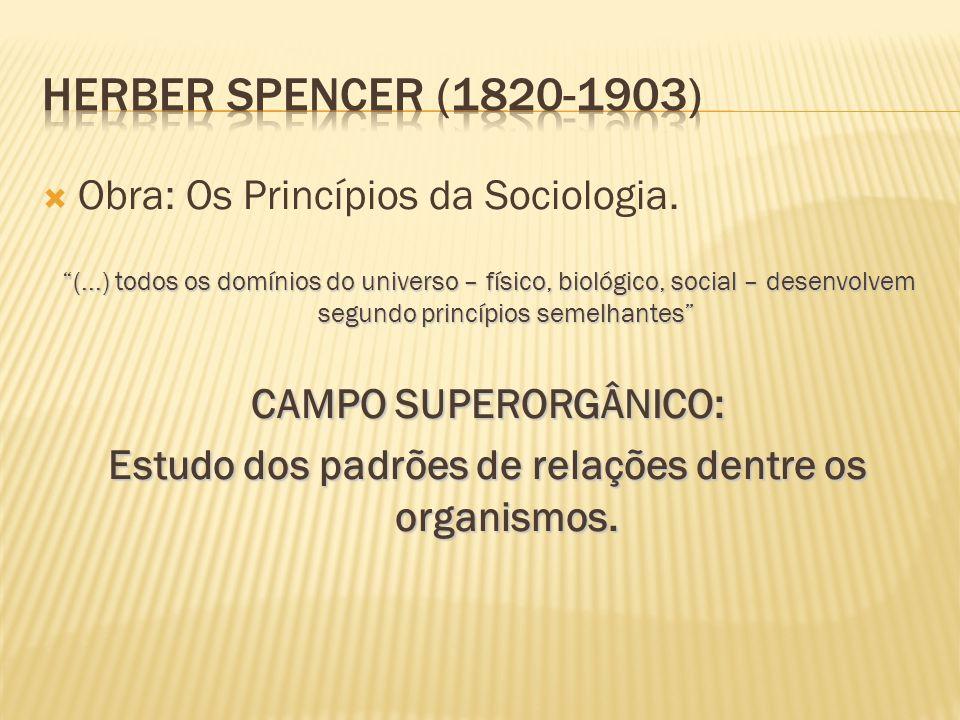" Obra: Os Princípios da Sociologia. ""(...) todos os domínios do universo – físico, biológico, social – desenvolvem segundo princípios semelhantes"" CA"