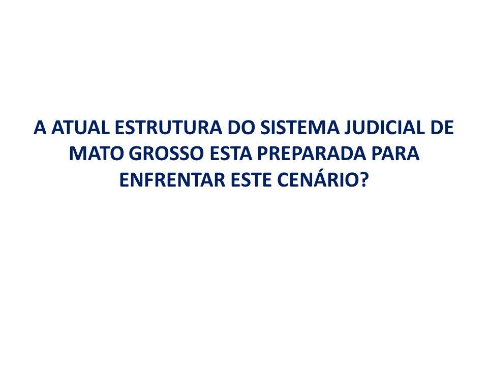 A ATUAL ESTRUTURA DO SISTEMA JUDICIAL DE MATO GROSSO ESTA PREPARADA PARA ENFRENTAR ESTE CENÁRIO