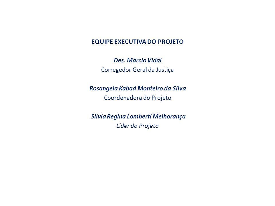 EQUIPE EXECUTIVA DO PROJETO Des.