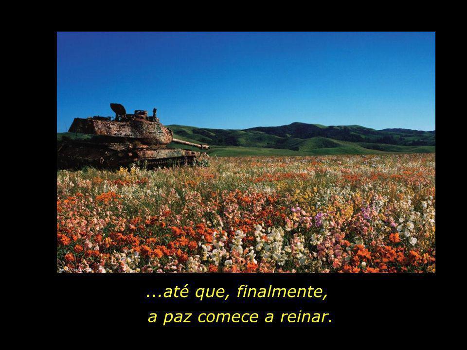Quantas vidas ainda serão castigadas pelo flagelo das guerras...