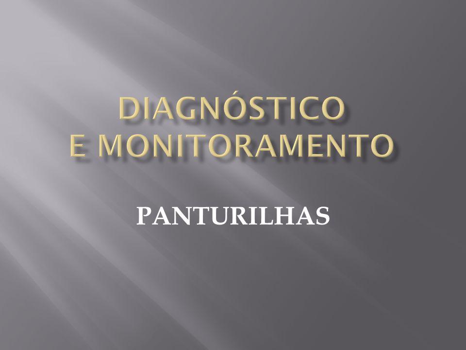 PANTURILHAS