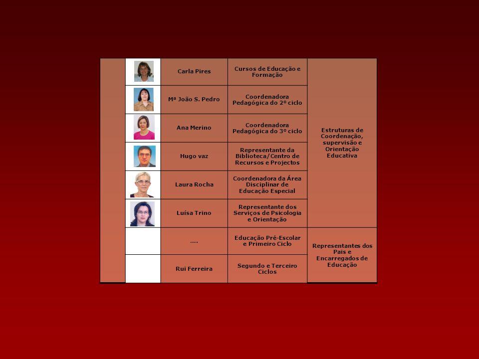 Carla Pires Cursos de Educação e Formação Estruturas de Coordenação, supervisão e Orientação Educativa Mª João S. Pedro Coordenadora Pedagógica do 2º