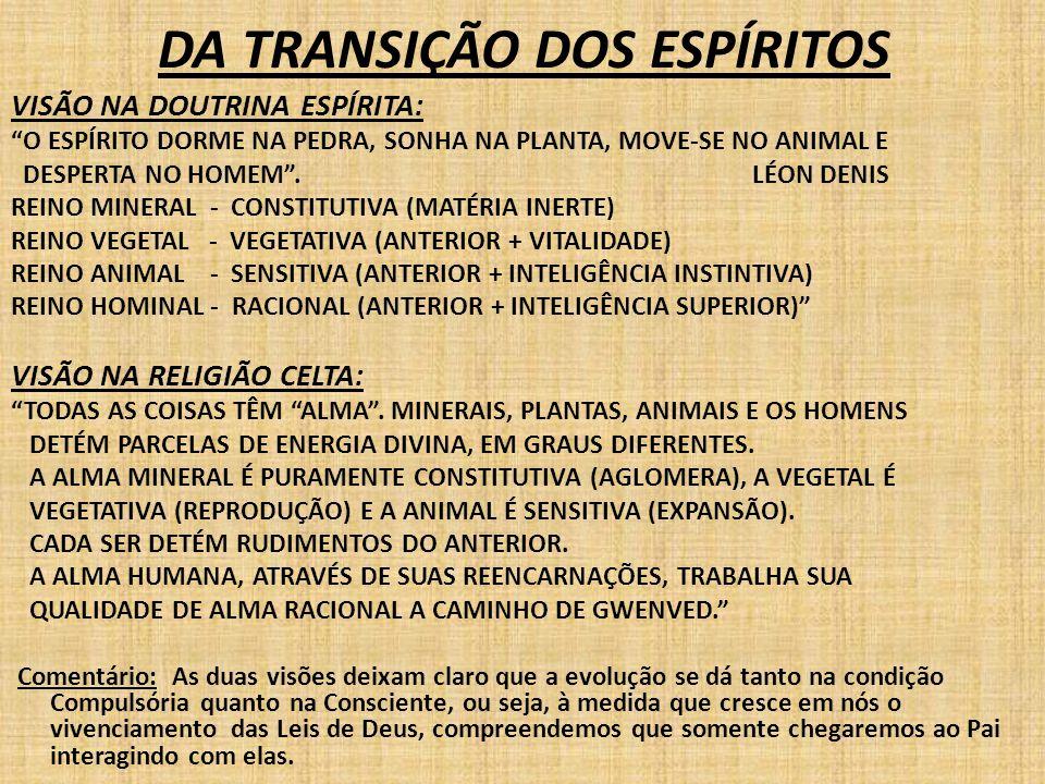 """DA TRANSIÇÃO DOS ESPÍRITOS VISÃO NA DOUTRINA ESPÍRITA: """"O ESPÍRITO DORME NA PEDRA, SONHA NA PLANTA, MOVE-SE NO ANIMAL E DESPERTA NO HOMEM"""". LÉON DENIS"""