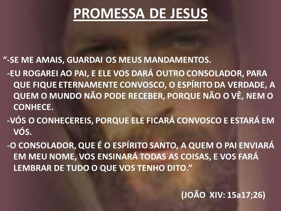 """PROMESSA DE JESUS """"-SE ME AMAIS, GUARDAI OS MEUS MANDAMENTOS. -EU ROGAREI AO PAI, E ELE VOS DARÁ OUTRO CONSOLADOR, PARA QUE FIQUE ETERNAMENTE CONVOSCO"""