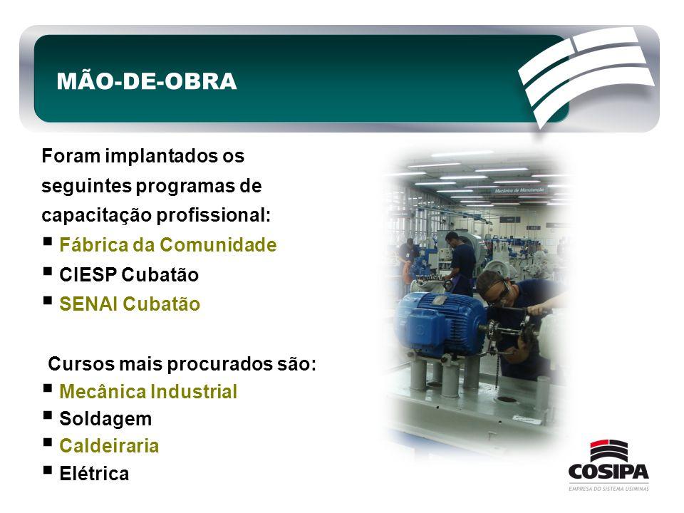 MÃO-DE-OBRA Foram implantados os seguintes programas de capacitação profissional:  Fábrica da Comunidade  CIESP Cubatão  SENAI Cubatão Cursos mais