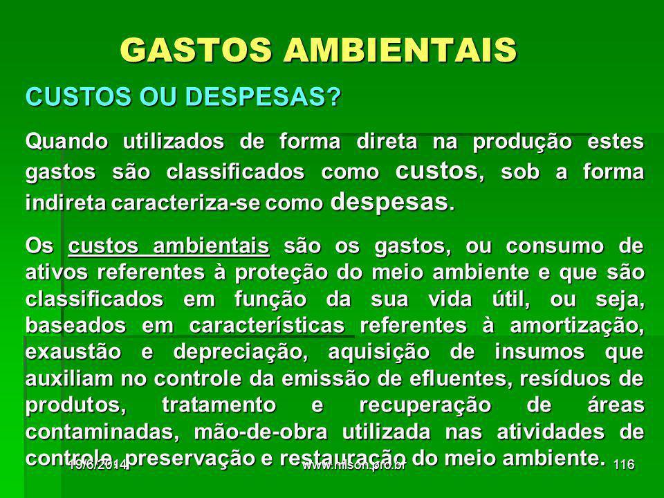 GASTOS AMBIENTAIS CUSTOS OU DESPESAS.