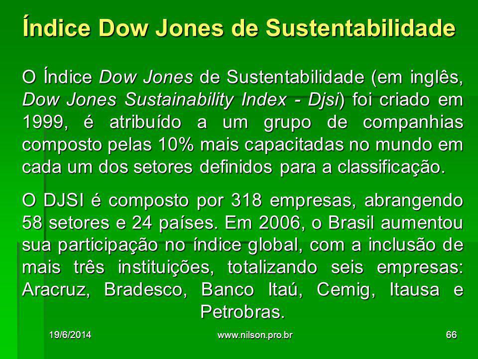 O Índice Dow Jones de Sustentabilidade (em inglês, Dow Jones Sustainability Index - Djsi) foi criado em 1999, é atribuído a um grupo de companhias composto pelas 10% mais capacitadas no mundo em cada um dos setores definidos para a classificação.
