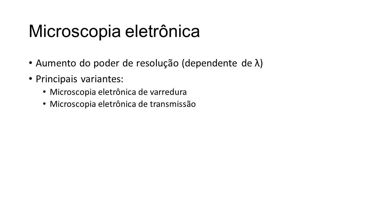 Microscopia eletrônica • Aumento do poder de resolução (dependente de λ) • Principais variantes: • Microscopia eletrônica de varredura • Microscopia eletrônica de transmissão