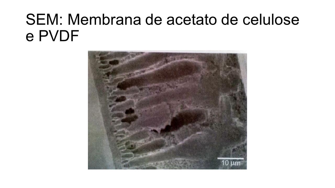 SEM: Membrana de acetato de celulose e PVDF